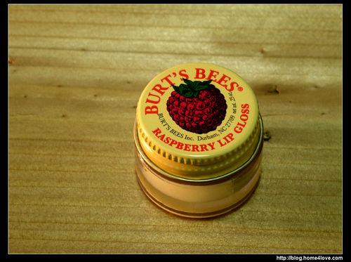Raspberry Lip Gloss